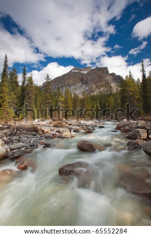 Flowing Stream in Banff National Park, Alberta, Canada