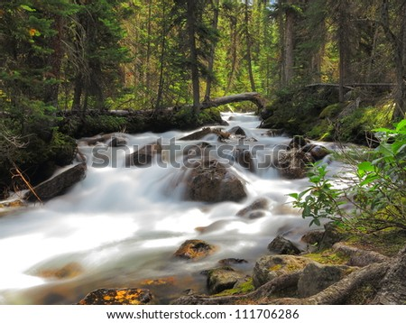 Flowing stream in Banff National Park, Canada