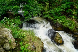 Flowing water in a tiny creek in the mountains of Dalat, Vietnam, an idyllic creek splashing down the creek bed with big boulders on the side covered with green juicy moss and some farns growing