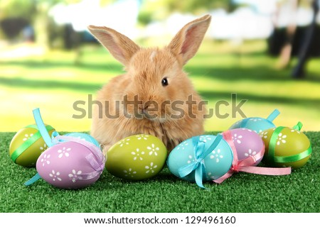 Fluffy foxy rabbit on grass with Easter eggs in park