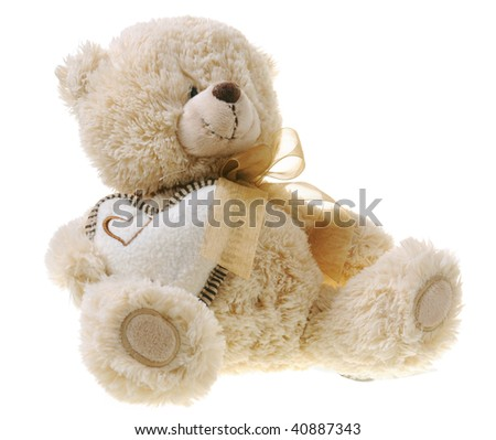 Fluffy teddy bear isolated on white background