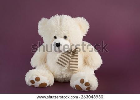 Fluffy teddy bear on a deep pink background