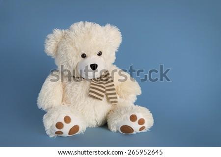 Fluffy teddy bear toy on a blue background