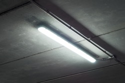 Fluorescent tube lamp in a garage. Mysterious or horror scene or environment with spiders next to white light from a tube lamp.
