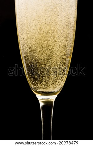 Flute with sparkling champagne against black background