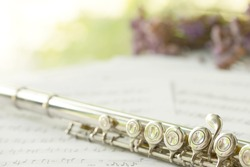 Flute, woodwind brass instrument in classical orchestra. Silver modern flute on white sheet music note for education and performance.