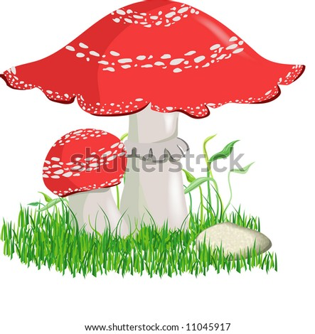Fly Agaric Drawing Fly Agaric.drawing