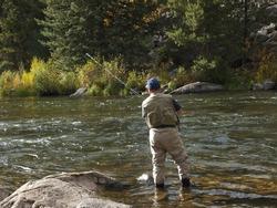 Fly fisherman at Taylor River, Colorado.