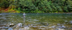 Fly fisherman Spey casting for steelhead on the wild and scenic Rouge River in Southern Oregon
