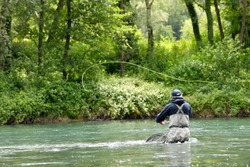 fly fisherman with black jacket fishing in the middle of the river in a mountain river in summer
