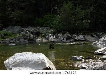 Pesca de la mosca en Montana