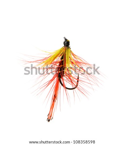 Fly fishing lure isolated on a white background