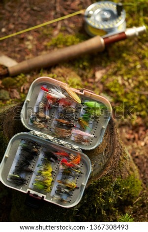 fly fishing rod and flies on forest ground and log