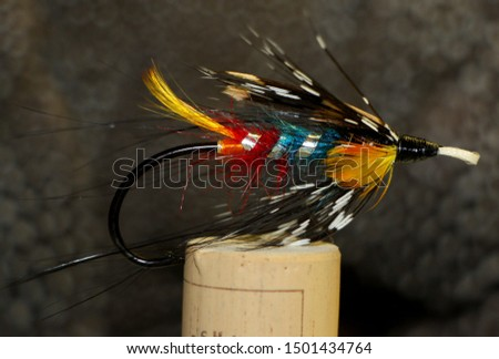 Fly for Fly Fishing trout