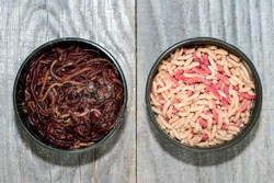 Fly larvae and compost worms in open fishing boxes on a wooden rustic background. The concept of choosing fishing bait for fishing.