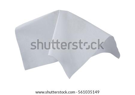 fly tissue