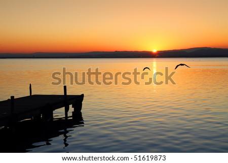 flying at dusk