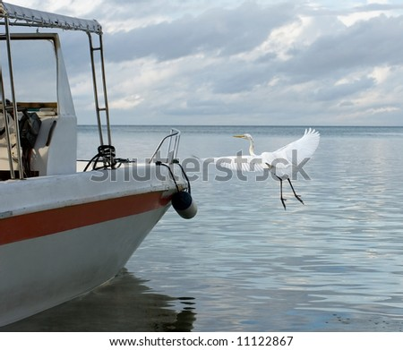 Flying bird and fishing boat.  Tropical seascape