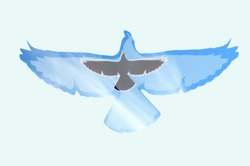 Flying bird in the sky and a plane in the background isolated on a white background (A combination of a real photo with clipart)