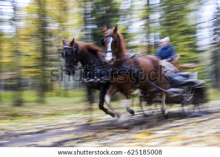 flying cart with two horses...