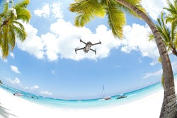 Flying drone in coconut leaves palms, overhead  fisheye lens view. Tropical vacation background.