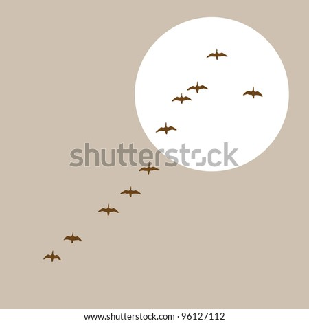 flying ducks silhouette on solar background