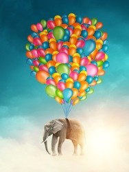 Flying elephant with colorful balloons