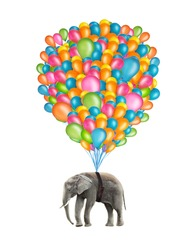 Flying elephant with colorful balloons isolated