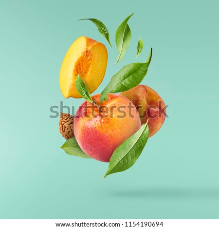 Flying fresh ripe peach with green leaves isolated on turquoise background. Concept of food levitation, high resolution image