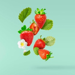 Flying Fresh tasty ripe strawberry with green leaves at turquoise background.  Food levitation concept. Creative food layout, High resolution image