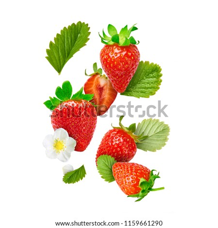 Flying Fresh tasty ripe strawberry with green leaves isolated on white background.  Food levitation concept. Creative food layout, High resolution image