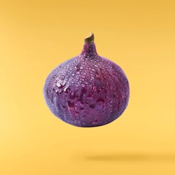 Flying in air fresh ripe  Fig isolated on pastel yellow background. High resolution image