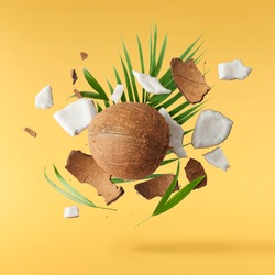 Flying in air fresh ripe whole and cracked coconut with palm leaves isolated on pastel yellow background. High resolution image, 3d concept