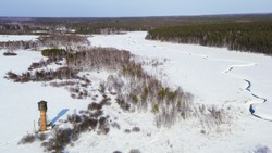 Flying in winter over a swamp covered with forest. Small river in the snow, Aerial View