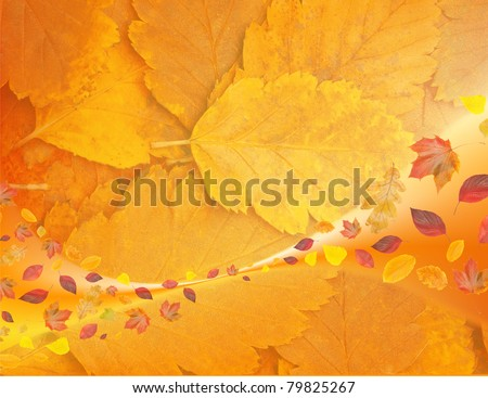 flying leaves on yellow background