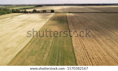 Flying over agricultural fields. In the fields are straw rolls. Warm summer day, shot under the rising sun. #1570382167