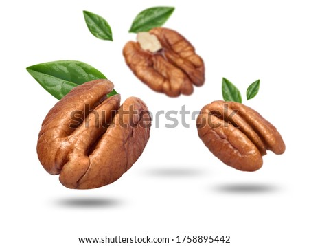 Flying pecan nuts isolated on white Zdjęcia stock ©