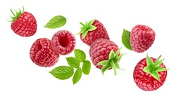Flying raspberry fruits and raspberry leaves. Raspberry with leaves isolated on a white background. Collection Clipping path.