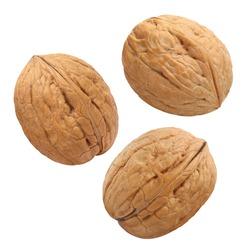 Flying walnuts, isolated on white background