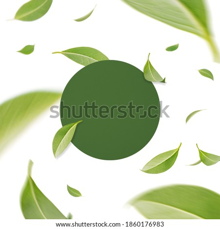 Flying whirl green leaves with frame concept Stock photo ©