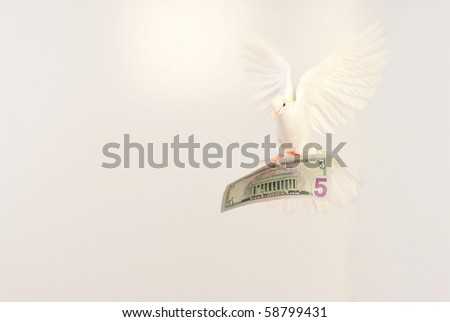 flying white dove and dollar