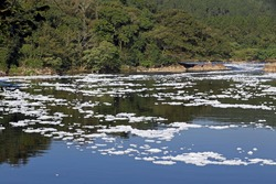 Foam of pollution on the Tiete River, the main hydrographic basin of the Sao Paulo State in Brazil