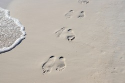 Foam wave and marks on white sand. Beach photo. Barefoot walk chain on wet white sand. Beach view photo. Foot marks on beach. Barefoot walk marks. Relaxing day on beach. Tropical seaside.