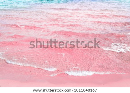 Foamy Rippled Clear Sea Wave Rolling to Pink Sand Shore Turquoise Blue Water. Beautiful Tranquil Idyllic Scenery. Tropical Beach Vacation Relaxation Paradise. Copy Space Elegant Styled Toned Image #1011848167