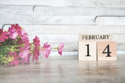 Focus object nature wood block with text and number 14February and pink flower on wood table and vintage wood background, Valentine's day and due date remember background concept,