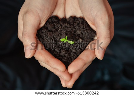 Focus on Little seedling in black soil on womans hand. Earth day and Ecology concept - Shutterstock ID 613800242