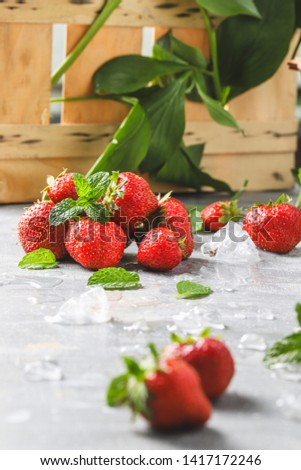FOCUS ON STRAWBERRIES AND MINT WITH GOOD LIGHT ON A GREY TABLE WITH PLANTS AND WOOD IN THE BACKGROUND #1417172246
