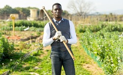 Focused African American standing with hoe in his kitchen garden, going to weed soil..