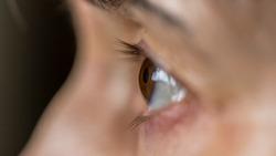 Focused human eye