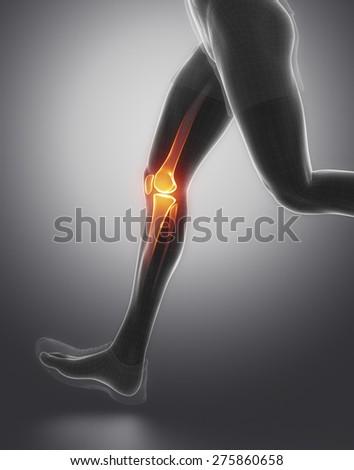 FOcused on knee